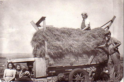 Jones family on hay wagon, Pen y Bwlch farm, Wales 1949