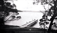 Bonnie Vale Wharf [courtesy of Sutherland Shire Libraries]