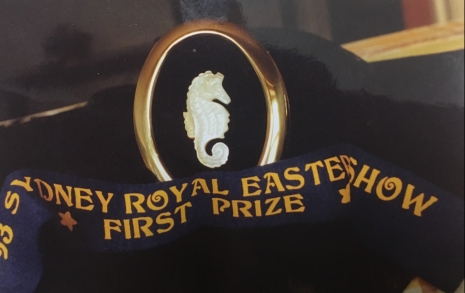 Shell Carving Prize