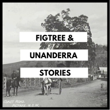 Figtree Unanderra Stories