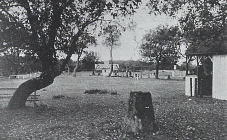 Stewart Park. P13827