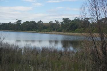 Coomaditchie Lagoon